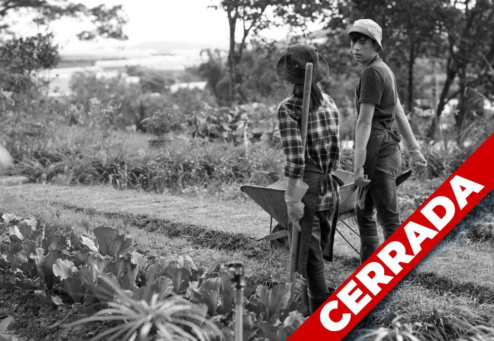 Convocatoria iNNpulsa Agroproductiva